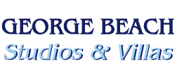 Visit George Beach Studios Website